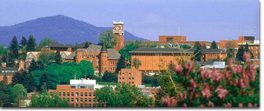 WSU campus spring