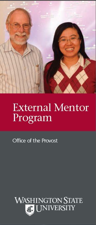 external_mentor_cover