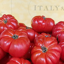 text: Italy, image: ripe red tomatoes