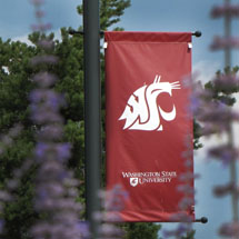 Image: Washington State University Banner hanging from lamp post with Cougar spirit head. Trees in background with flowers in foreground.