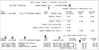 WSU/IT Usage Report sample