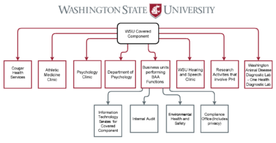 WSU Hybrid Entity Designation Covered Components - October 2020