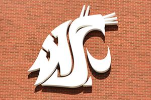 Cougar spirit logo