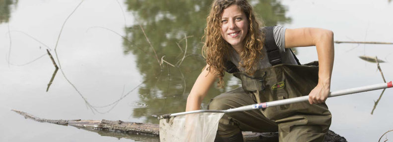 WSU's Emily Hall collects tadpoles