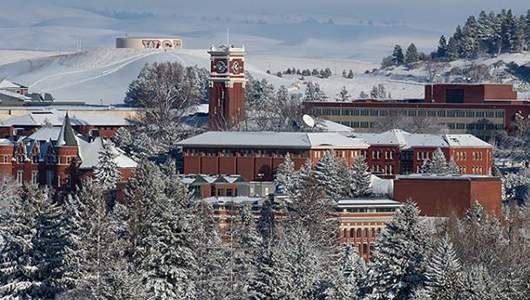 WSU campus in the snow