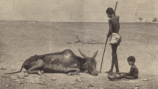 Engraving showing the plight of animals as well as humans in Bellary district
