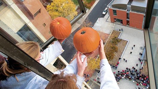 holding pumpkins out high window