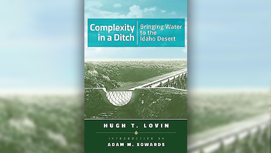 Book cover of Complexity in a Ditch.