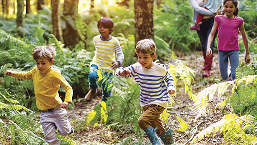 <em>Group of children at summer camp running through a woodland area with their guide/teacher walking behind them.</em>