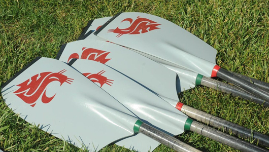 multiple rowing oars on the grass
