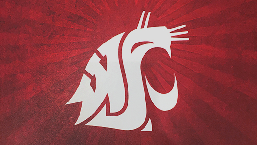 WSU spirit mark.