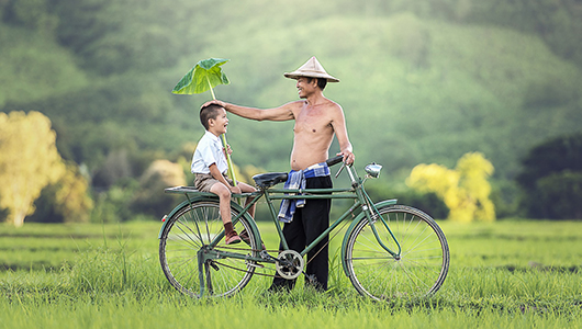 A man and child with a bicycle in an open grassy field.