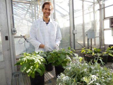 Korey Brownstein in a greenhouse.