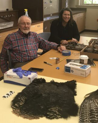 two people at a table with a turkey pelt.