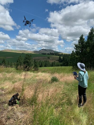 Amanda flying a drone over a field.