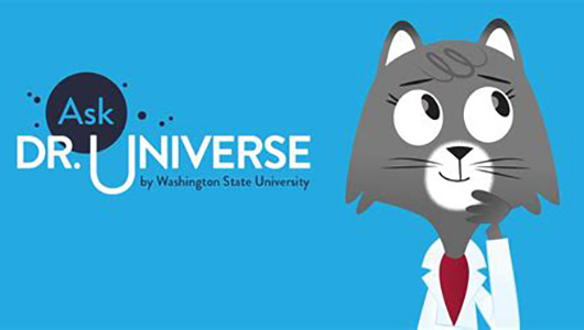 Ask Dr. Universe by Washington State University.