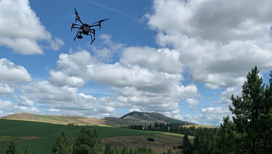 A drone flies over the landscape.