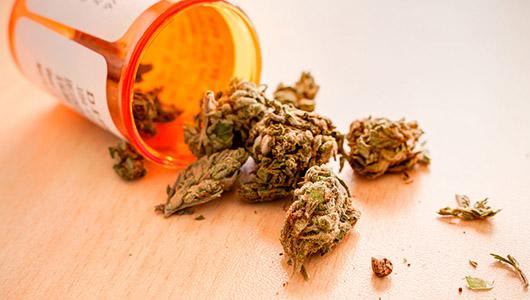 Medicinal cannabis.