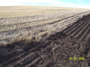 Figure 2. Winter erosion after winter wheat harvest, direct seed versus conventional tillage.