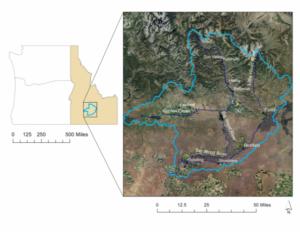 Map of the Big Wood Basin study area.