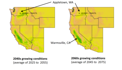Figure 1: Searching the Western US for growing condition analogues. The green locations are those whose current growing conditions (average of conditions from 1979 to 2016) are most similar to expected future growing conditions (projected for the 2040s on the left, and for the 2060s on the right) in Appletown, WA.