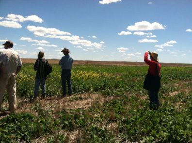 """""""Envisioning the future of the regional food system"""" (photo credit: Liz Allen)"""