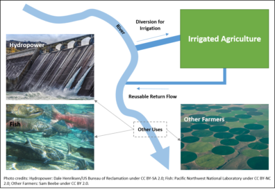 Conceptual diagram showing a river, water diverted to irrigated agriculture, and reusable return flow rejoining the river downstream. Other uses of the reusable flow include hydropower, fish and other farmers