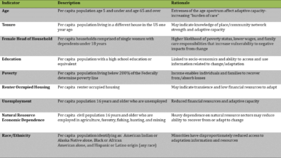 Table listing the selected indicators, with a description and the rationale for selection