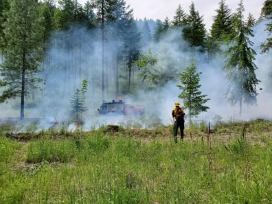 Firefighter in an open, meadow-like area, looking towards trees and a fire truck surrounded by smoke, with flames close to the ground in places