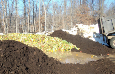 Pile of organic material surrounded by earth-looking compost piles