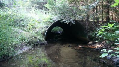 Semi-circular, open-bottom culvert, with stream flowing under it and vegetation showing above it