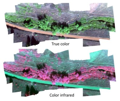 Aerial image showing a riparian corridor and a road along it, viewed from above. The image is repeated, with false colors highlighting the riparian corridor.