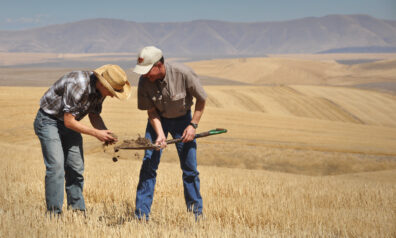 Farmer and NRCS soil conservationist looking at a shovelful of soil in a harvested wheat field with standing residue