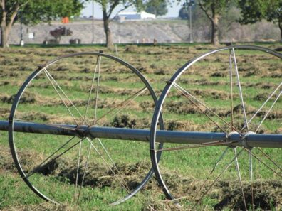 Irrigation system in a recently harvested hay field