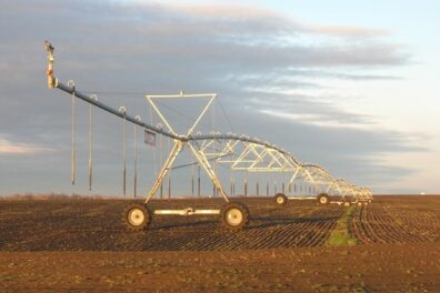 Center pivot irrigation system in a bare field with crop starting to emerge