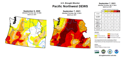 Side by side maps of the Pacific Northwest, colored for drought levels from none to exceptional drought. The 2021 map shows mostly extreme to exceptional, while 2020 map shows none to abnormally dry
