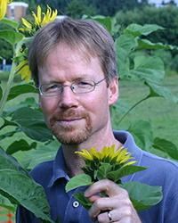 Loren Rieseberg in field of sunflowers.