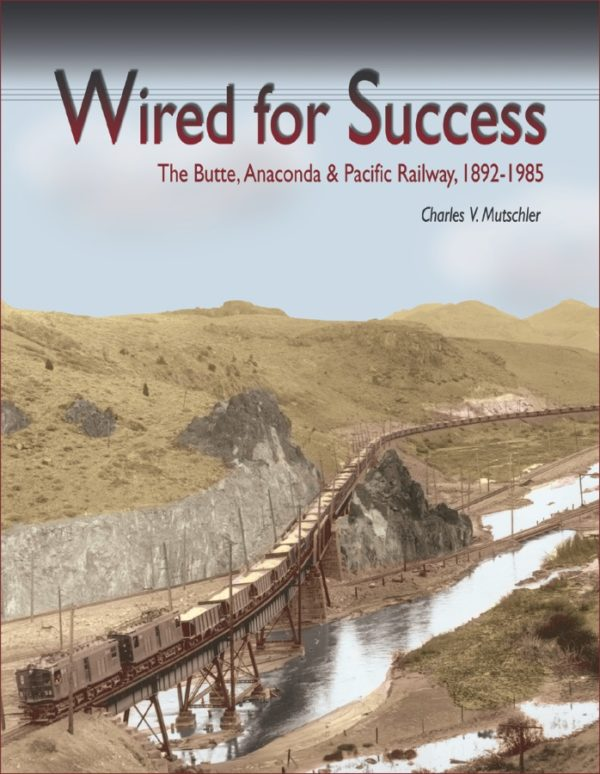 Wired for Success cover