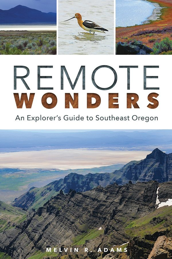 Remote Wonders cover