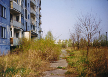 Overgrown sidewalk by apartment building. (April, 26 1998)