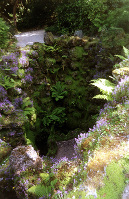 POWERSCOURT: An unusual feature of the Japanese Garden is this elaborate grotto.