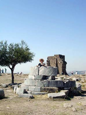 PERGAMUM ACEOPOLIS: Paula working at the reference desk.