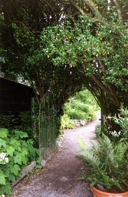 POWERSCOURT: Entrance into one of the walled gardens.
