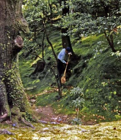 KYOTO: Moss gardens need to be carefully swept to maintain their velvety surface. Traditional Japanese gardens are highly labor intensive. May 26, 1998