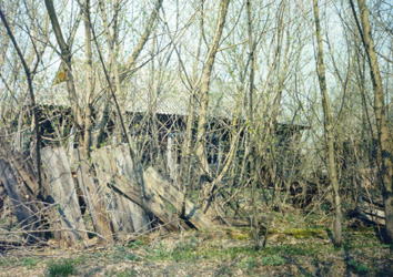 The village of Zaliss'a near Pripyat (April 26, 1999)