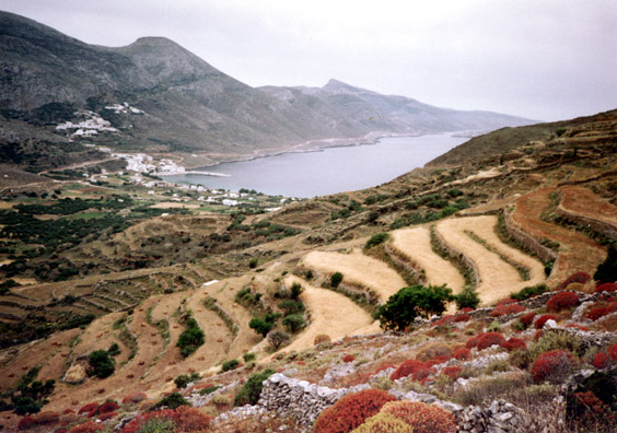 AMORGOS: View of the harbor of Ormos, where we first arrived.