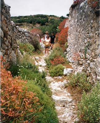 AMORGUS: The steep tracks were often lined with dry stone walls.