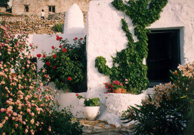 AMORGOS: Beautiful flowers maintained by her sister-in-law, Carolina, who has lived in the village for many years.