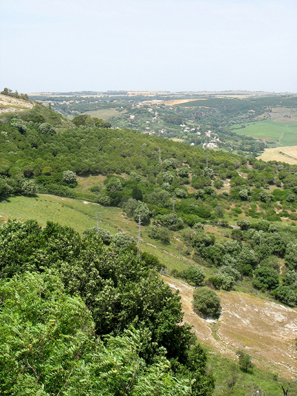 VEJER DE LA FRONTERA: The view out our apartment window, on the edge of this hilltop town.