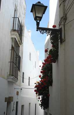 VEJER DE LA FRONTERA: More narrow streets, lined with beautiful flowers.